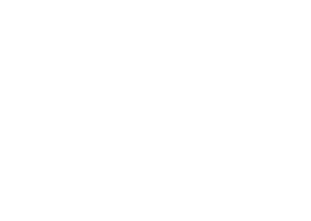 Youth Council